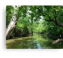 Hidden Creek with Ducks Canvas Print