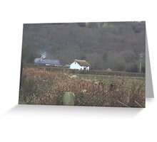 Isolated thatched cottage Greeting Card