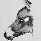 Arab Foal by Penny Edwardes