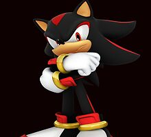 Shadow The Hedgehog- I promise you....Revenge! by DannyBalmore