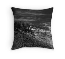Dusting of Snow Throw Pillow