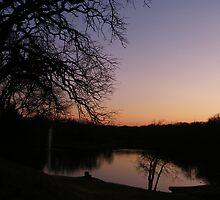 2-24 Sunset 42 by Brenda Loveless