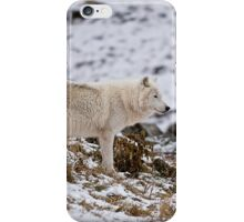 Arctic Wolf on Hill iPhone Case/Skin