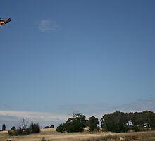 kite in the sky by bubblewrap