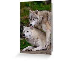 Double Raspberry  Greeting Card