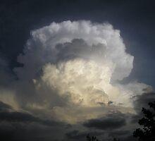 Emerging Monsoon by Ann Warrenton
