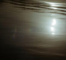 Gunmetal Light by Larry149