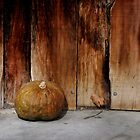 Lonely Pumpkin  by Alessandro Pinto