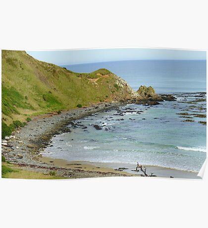 Roaring Bay - Kaka Point Reserve - Southland New Zealand Poster