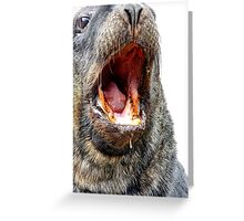 Slobber Chops - New Zealand Sea Lion  Greeting Card