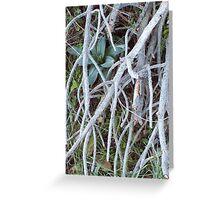 hidden Greeting Card
