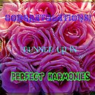 Perfect Harmonies - Runner Up Banner by kathrynsgallery