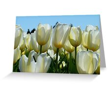 Heaven On Earth! - White Tulips - Rural New Zealand Greeting Card