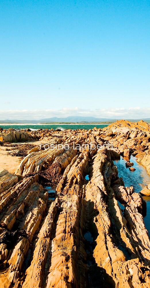 Jervis Bay by Rosina  Lamberti