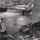 Creek Flowing 2: Black and White by Paul  Huchton