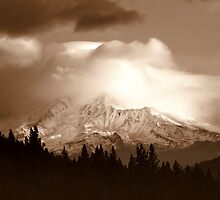 Mt. Shasta After Fresh Snow by seanrainer