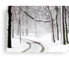 Snowy morning in Bronx, New York City  Canvas Print