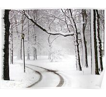 Snowy morning in Bronx, New York City  Poster