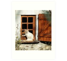 guarding the window Art Print