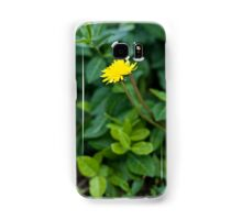 A Dandelion in the Spring Samsung Galaxy Case/Skin