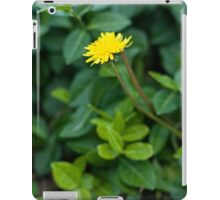 A Dandelion in the Spring iPad Case/Skin
