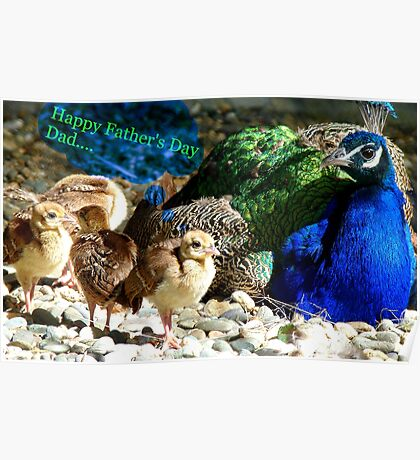 Happy Fathers Day Dad.. - Peacock & Chicks - NZ Poster
