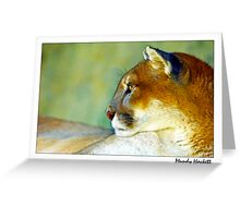 Signature series ~ Gyptian Greeting Card