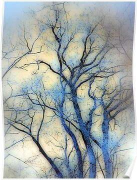 blue trees by brian gregory