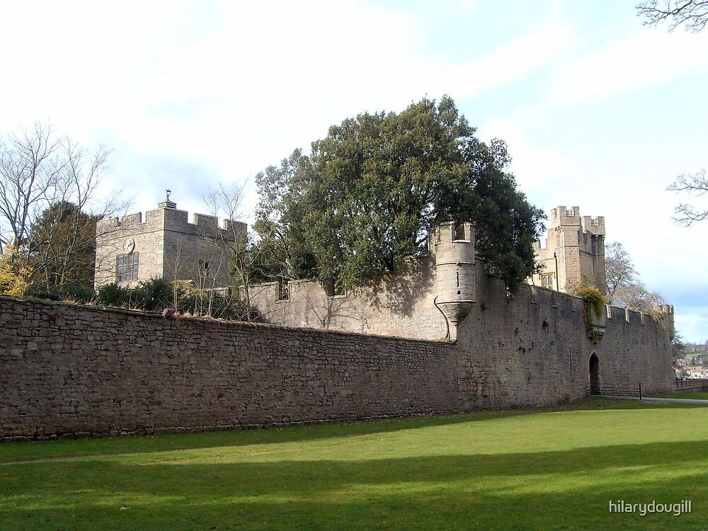 Witton Castle by hilarydougill