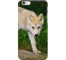 Arctic Wolf Pup on Rock iPhone Case/Skin