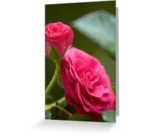 Sparkle of Passion Greeting Card