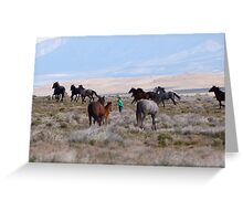 The little girl who loved mustangs Greeting Card