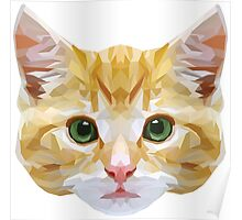 Crystalline Cat Poster