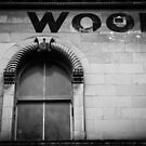 Wool by Mike Warman