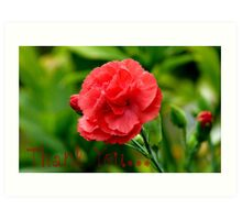 Thank you! - Red Carnation - Southland NZ Art Print