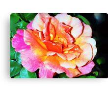 Rain splattered rose Canvas Print