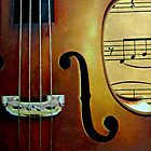 Violin Music by Swede
