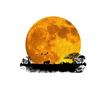 African Moonrise Photographic Print