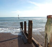 Teignmouth Beach by sandrab