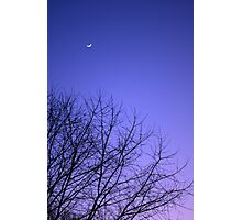 Moon, Sky, Tree (Vertical) Photographic Print