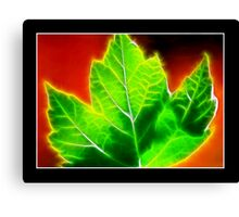 Life Force Canvas Print
