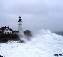Crashing ashore!!! by lloydsjourney