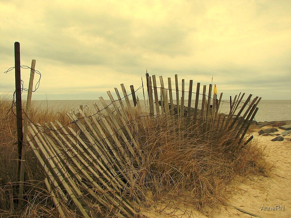 Higbee Beach by AnneRN