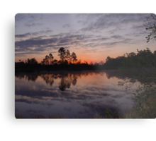 Morning on Bear Creek Metal Print