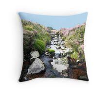 Glendalaugh Stream #1 Throw Pillow