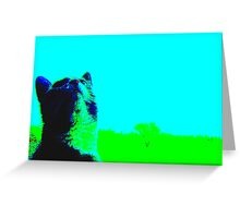 Looking Up!!! Greeting Card