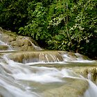 Dunns River Falls, Jamaica by Paul  Huchton