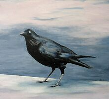 crow #1 by davey