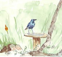 Cape Glossy Starling (Lamprotornis nitens) by Maree  Clarkson