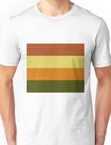 Brush Stroke Stripes: Fall Foliage Unisex T-Shirt